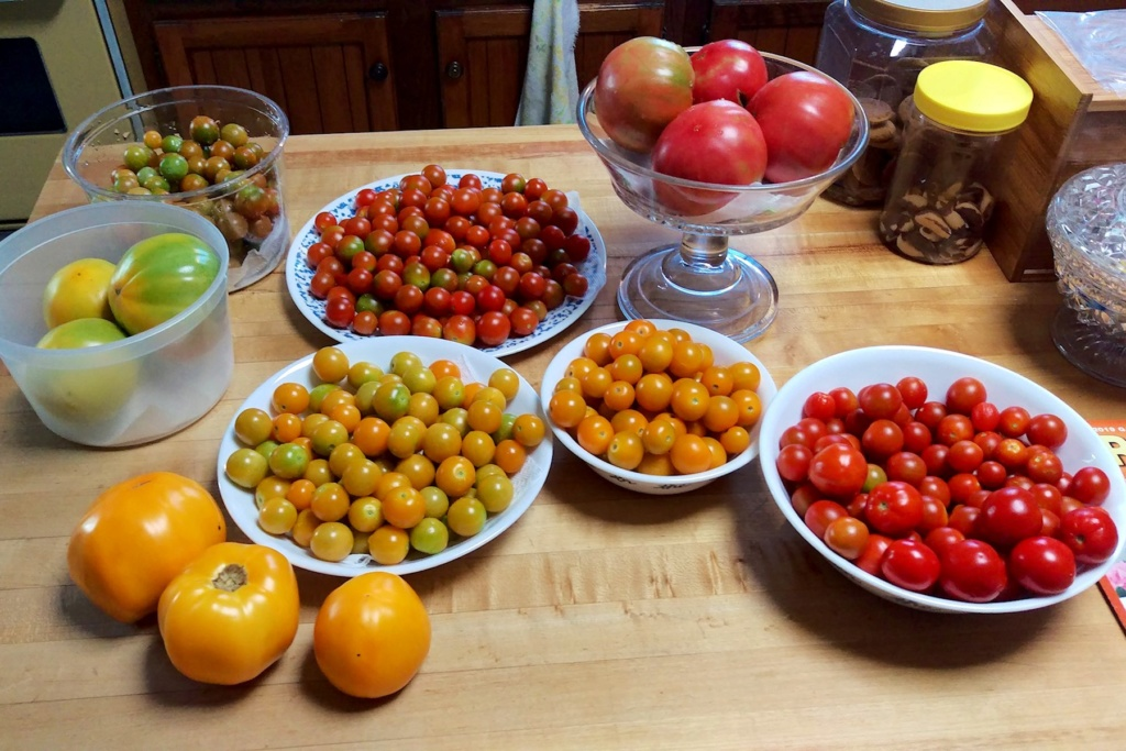 N&C Midwest—September 2019 Tomato42