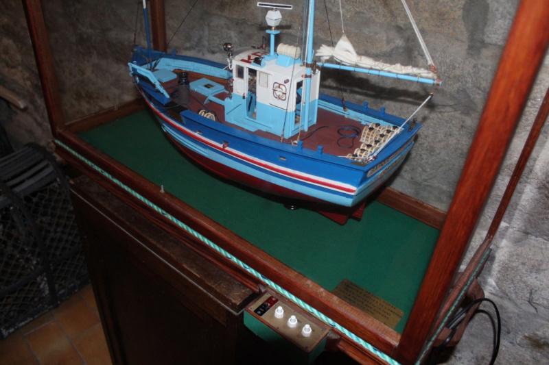 Mon 3ème bateau La barque se St Pierre ( chalutier cotier caseilleur ) Img_4767