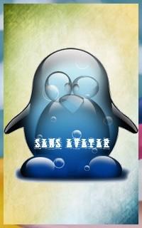 Le Petit Pingouin Sans10