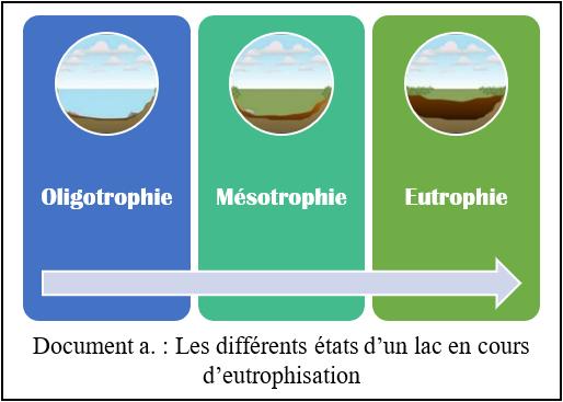 L'eutrophisation, un nouvel enjeu environnemental à redouter A11