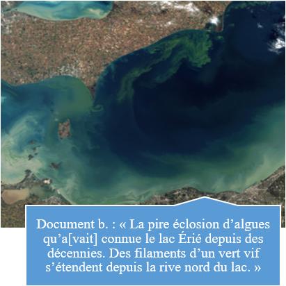 L'eutrophisation, un nouvel enjeu environnemental à redouter B10
