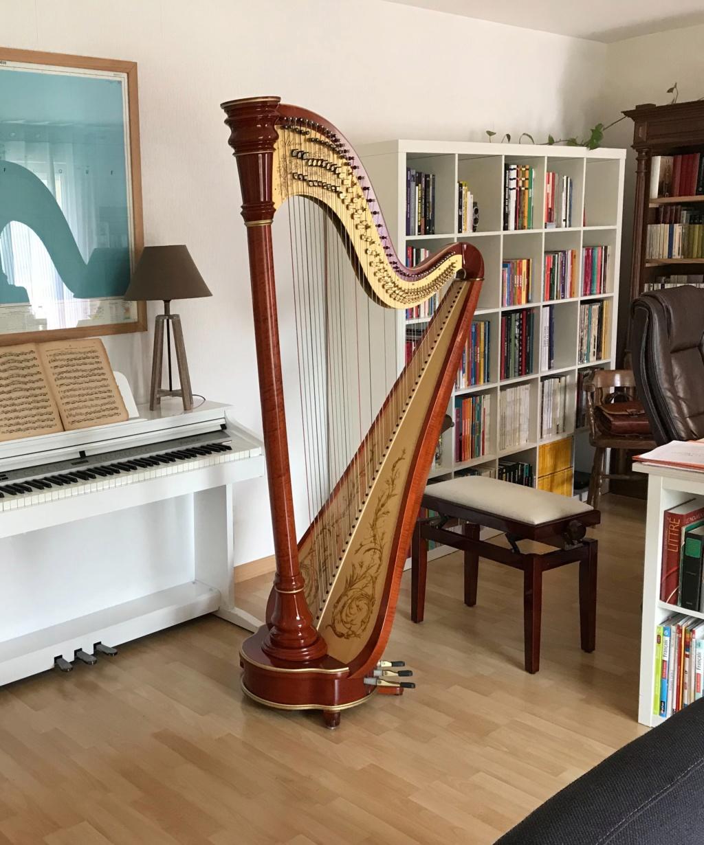 Pédales d'effets, de boucle, MIDI + pleins de choses à brancher sur sa harpe Img_0610