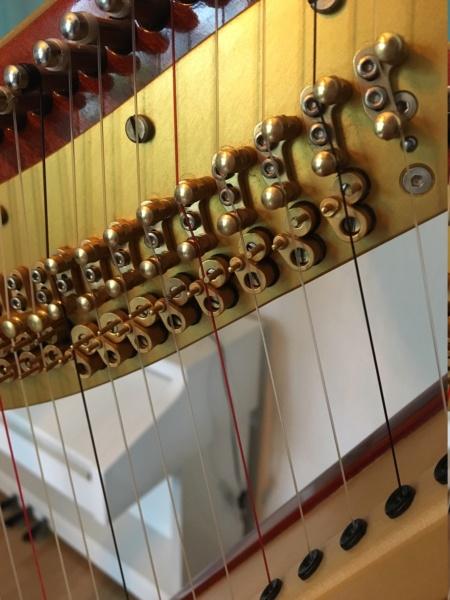 A la recherche de photos de harpe classique.. Img_7612