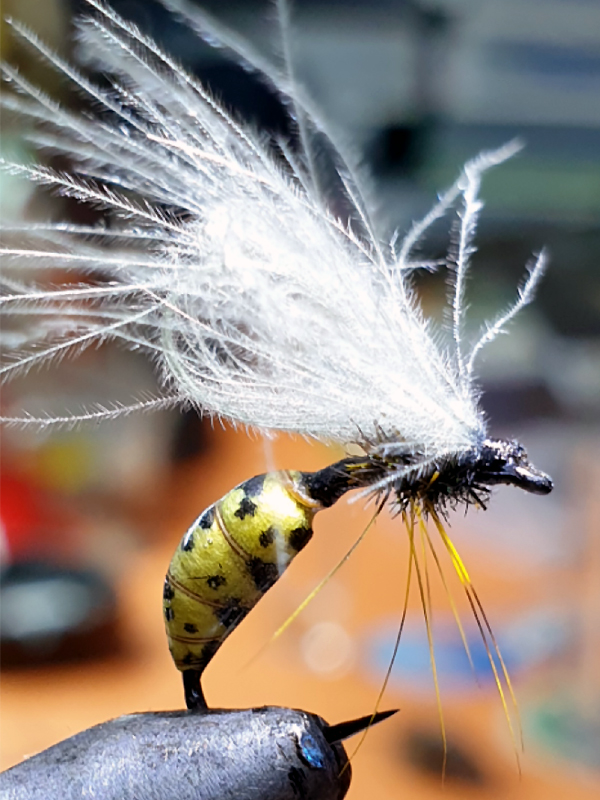 Kopneni insekti...ose, pcele bumbari, razni tvrdokrilci.... - Page 4 Os110