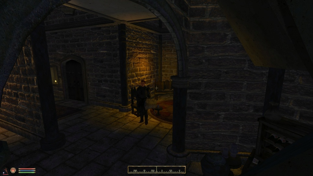 Oblivion Reloaded shadows indoors: very low FPS and glitches 20201115