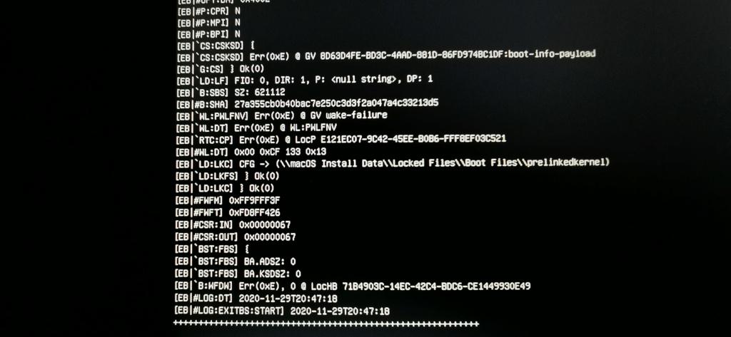 Asus & Nvidia update Catalina to Big Sur Beta 7 Img_2010