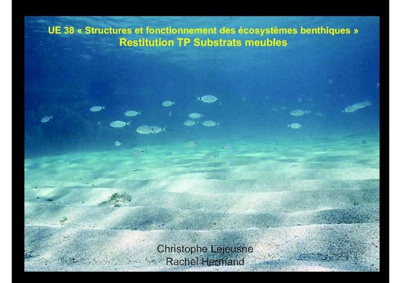 Structures et fonctionnement des écosystèmes benthiques  Cours_10