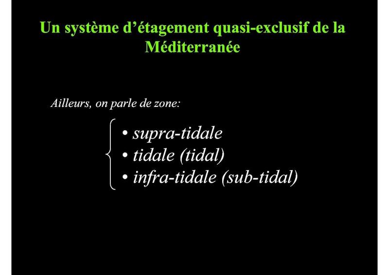 Structures et fonctionnement des écosystèmes benthiques  Cours_13