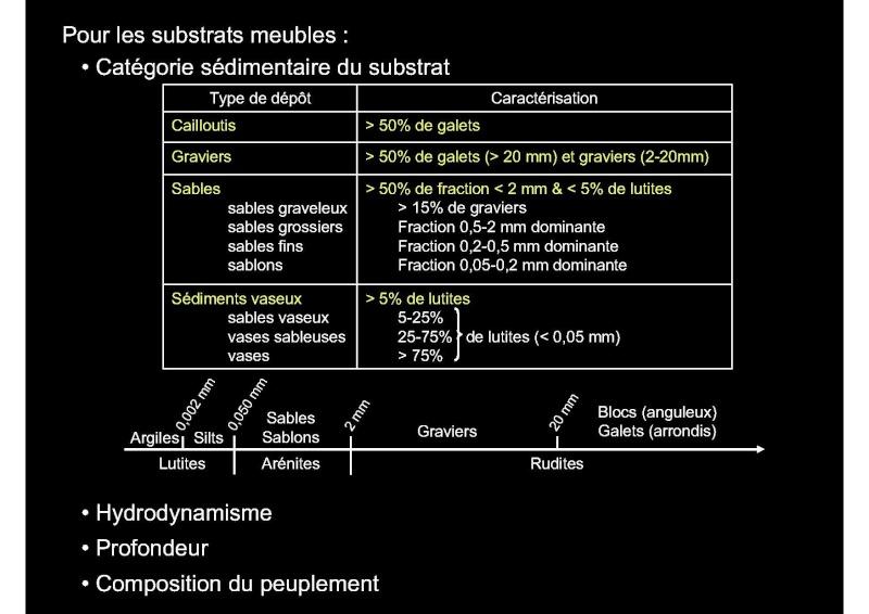 Structures et fonctionnement des écosystèmes benthiques  Cours_14