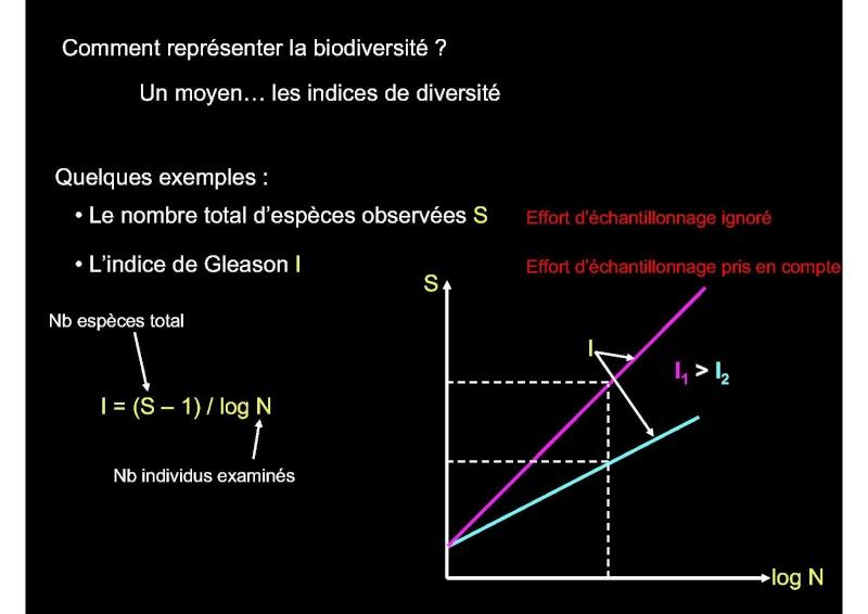 Structures et fonctionnement des écosystèmes benthiques  Cours_37