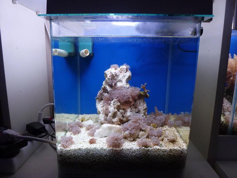 mon 30 litres Nano_510