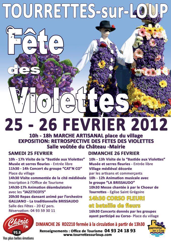 Des violettes 43096610