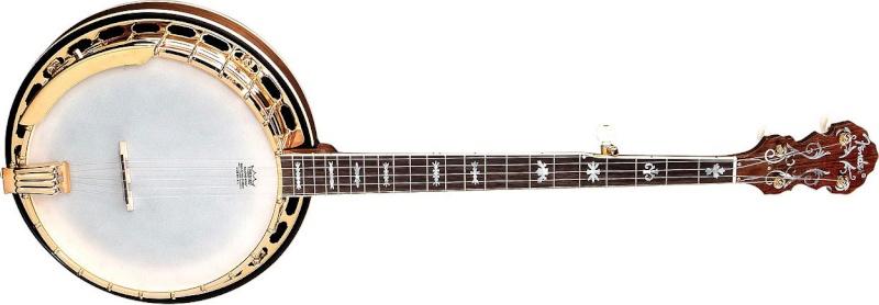 banjo 5 cordes 11405910