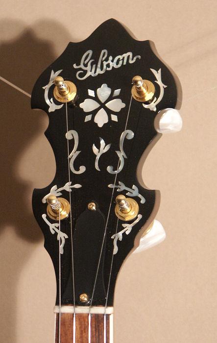 banjo 5 cordes 530_2010