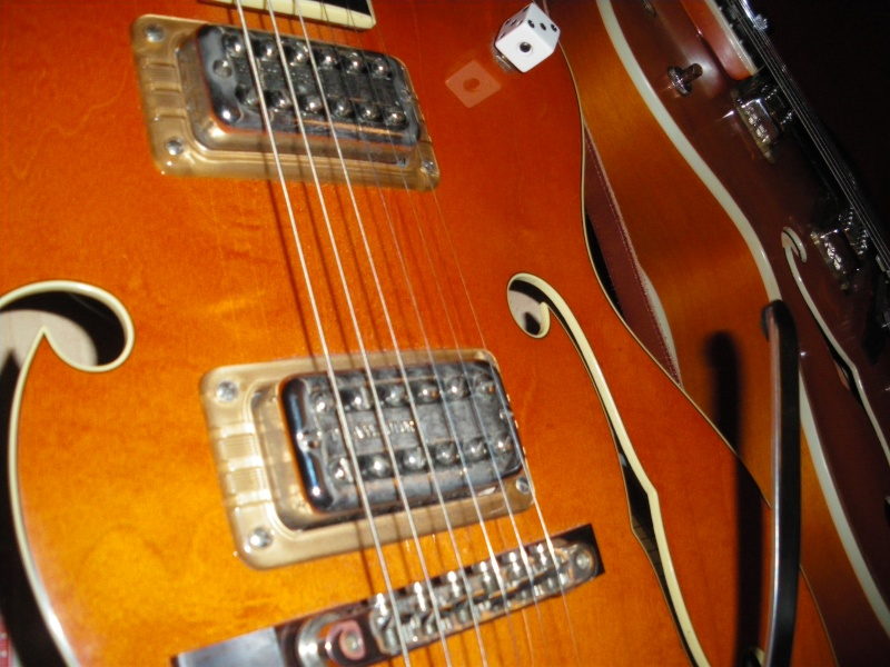 GRETSCH G5120 SSC TRIBUTE................................... - Page 7 611