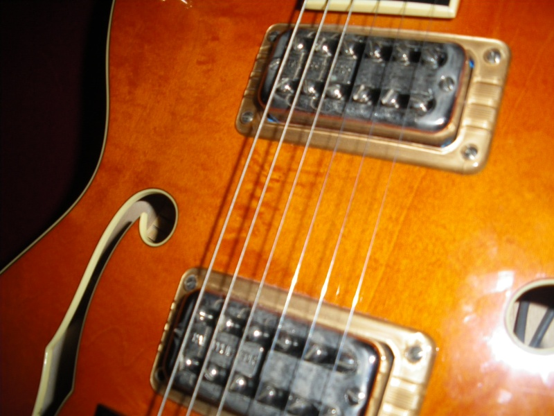 GRETSCH G5120 SSC TRIBUTE................................... - Page 7 711