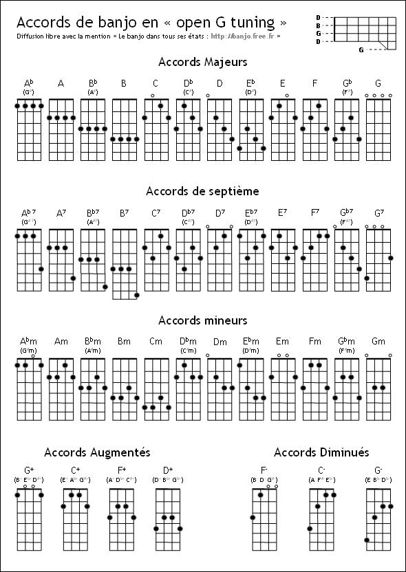 banjo 5 cordes Accord10