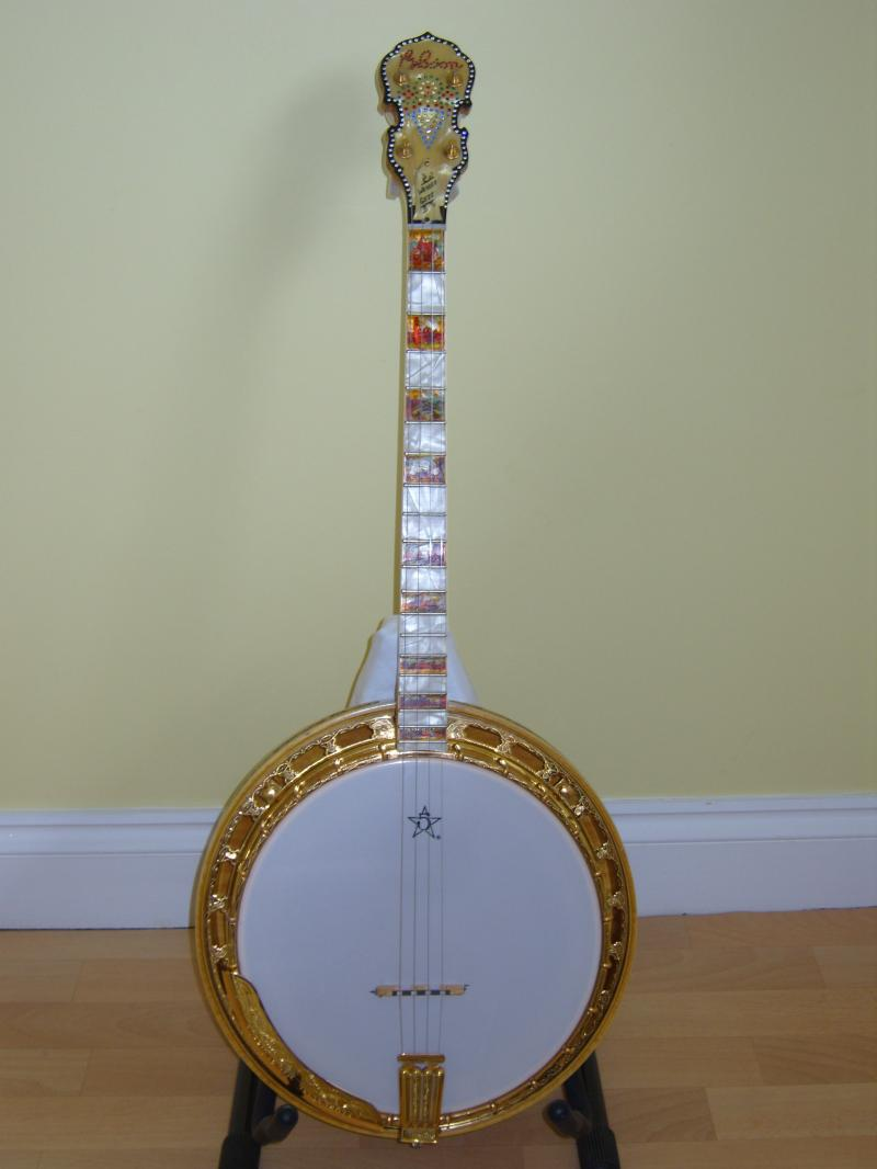 banjo 5 cordes Banjos10