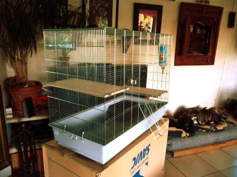 vend grande cage savic chichi 3 (84  ou 74 ) P1130710