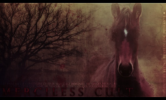 ► Merciless Cult Mercil10