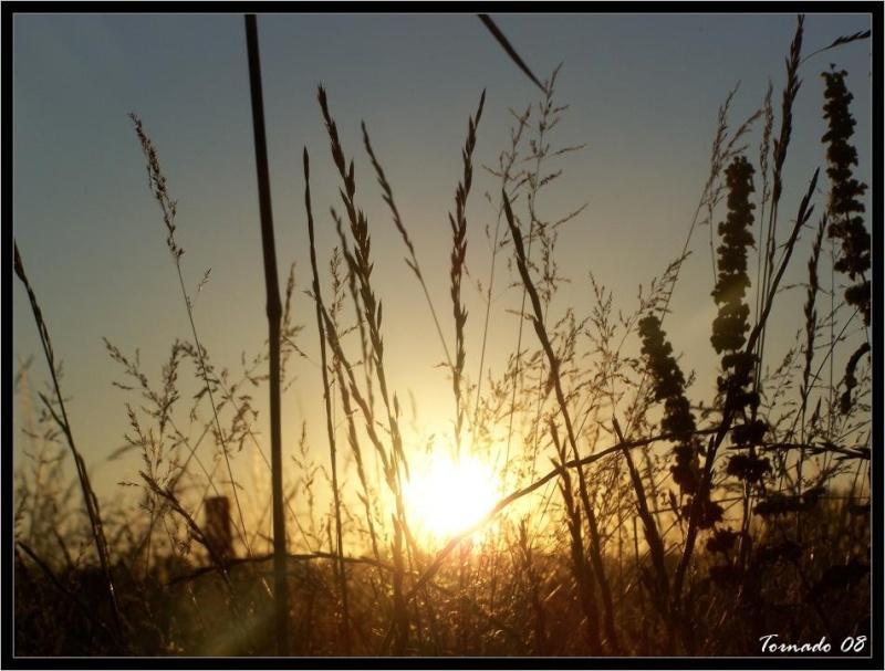 Lever/Coucher de soleil Image101