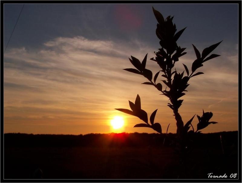Lever/Coucher de soleil Image_63