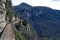 [L'Esclapa l'Oeil Trail 2008] Thierry Gdl08t10