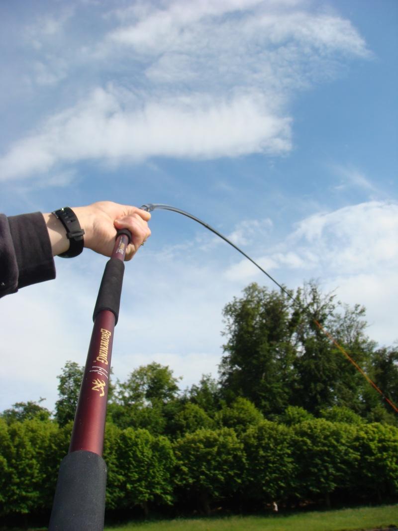 Petite pêche de bordure ! Dsc03411