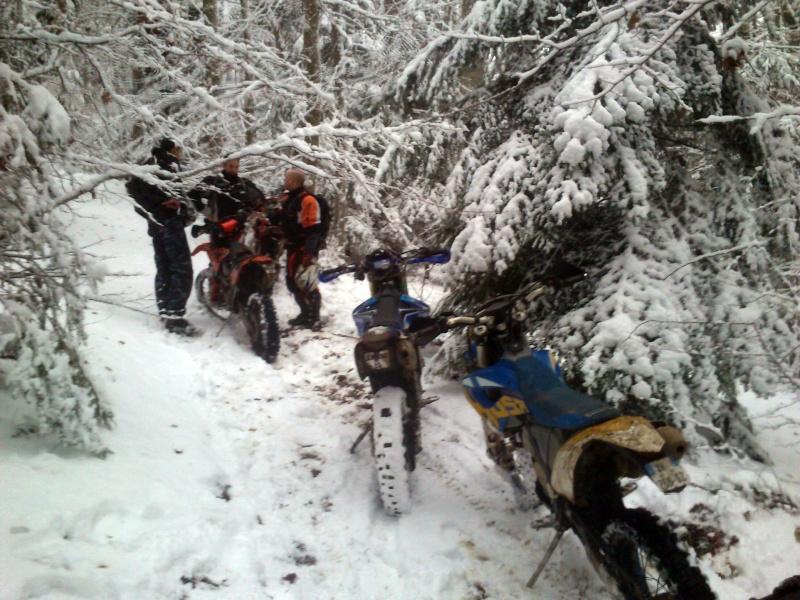 Les monts du lyonnais sous la neige Dsc_0110
