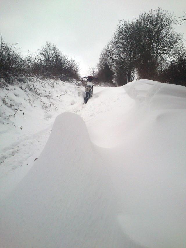 Les monts du lyonnais sous la neige Dsc_0214