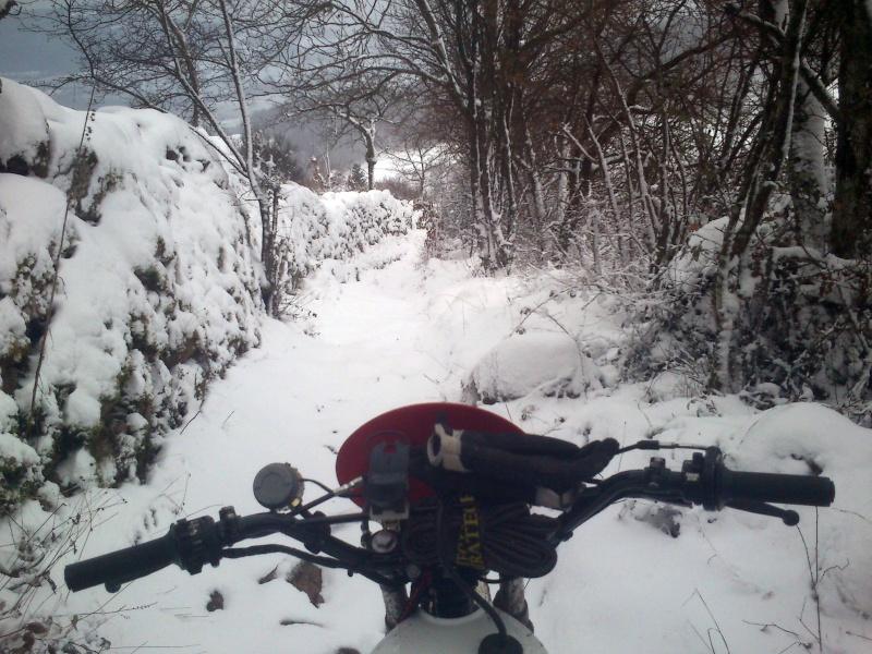 Les monts du lyonnais sous la neige Dsc_0218