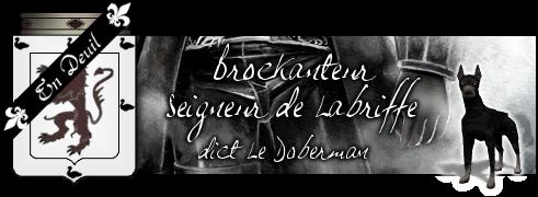 [Bannière - Réalisée] Un deuil a deux c'est encore mieux  Brocka11