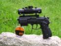 Mes armes P1010023