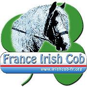 France IC - Bureau et Comité Directeur