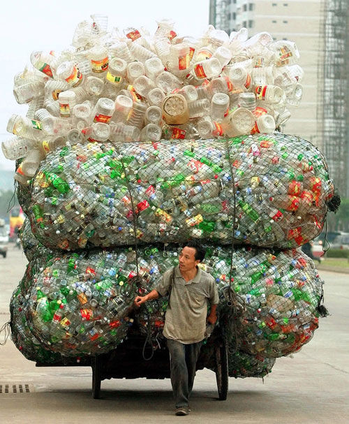 5 juin : Journée Mondiale de l'environnement — Que faites-vous pour l'environnement ? 53mr_r10
