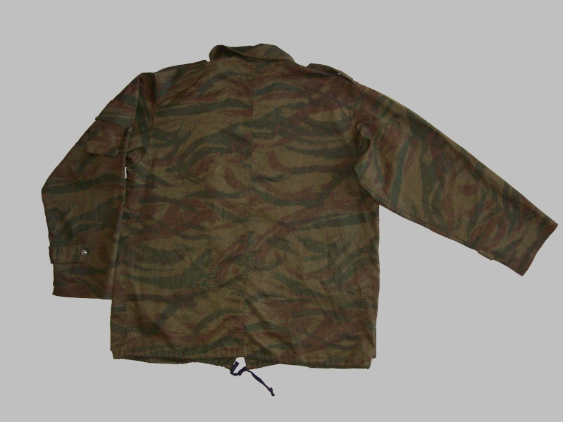 Serbian of Bosnian and Srpska repubic camouflage 100_0223