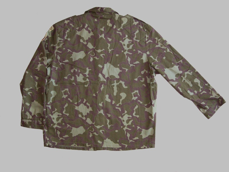 camouflage 100_4511