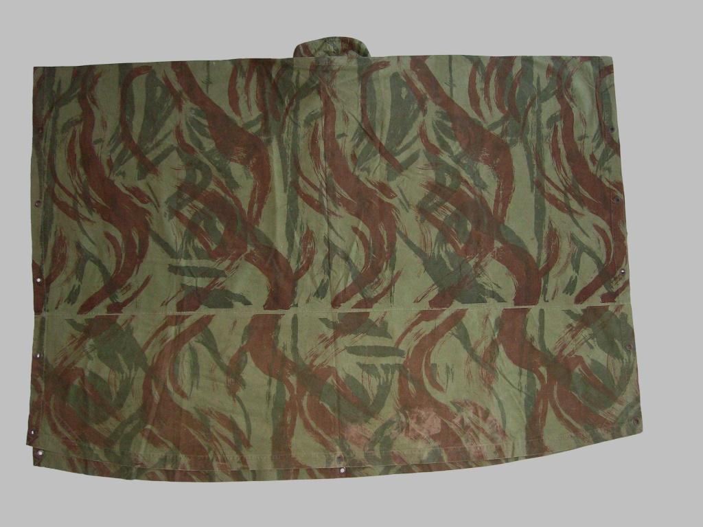 lizard pattern 100_4710