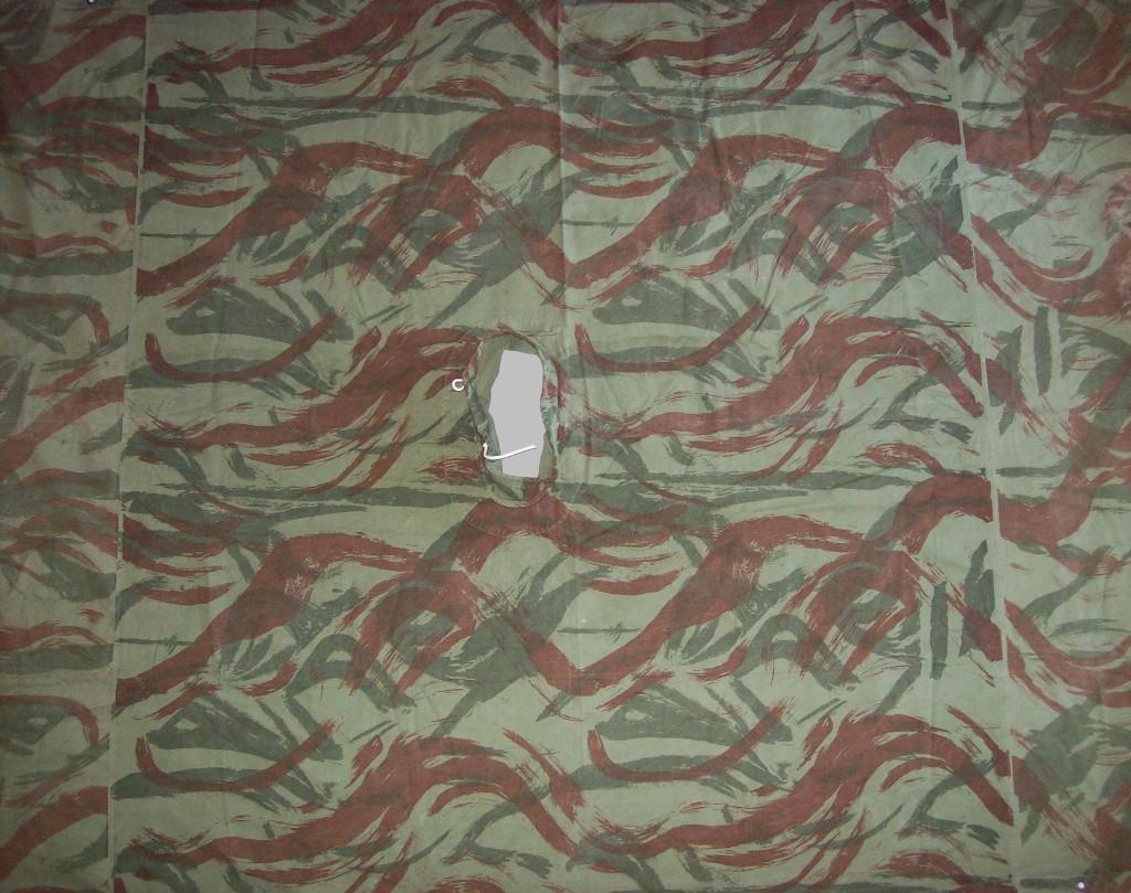 lizard pattern 100_4712