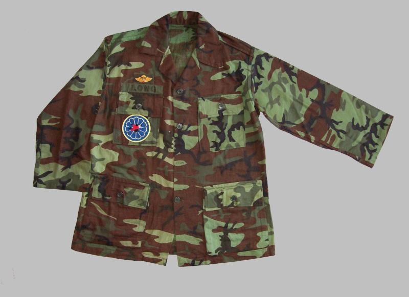 South Vietnam camouflage 100_4810