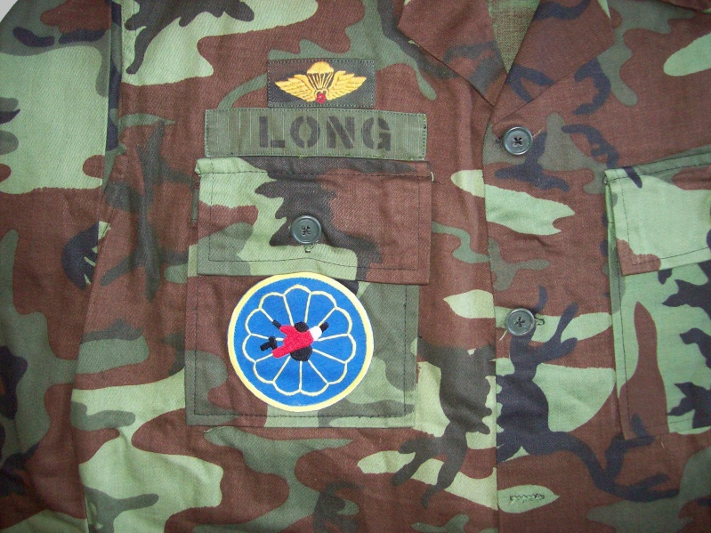 South Vietnam camouflage 100_4812