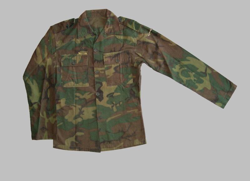 South Vietnam camouflage 100_4814