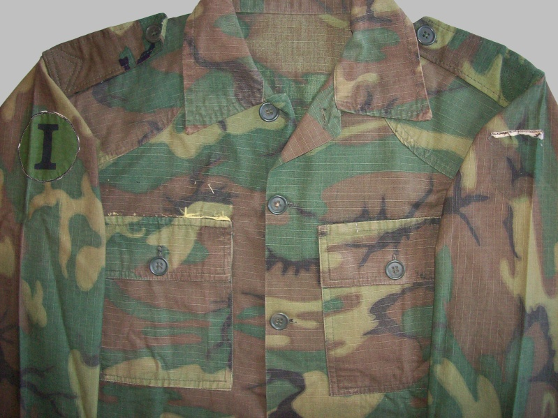 South Vietnam camouflage 100_4816