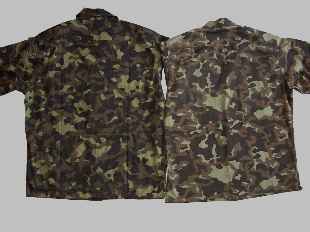 Ukrainian camouflage 100_7818