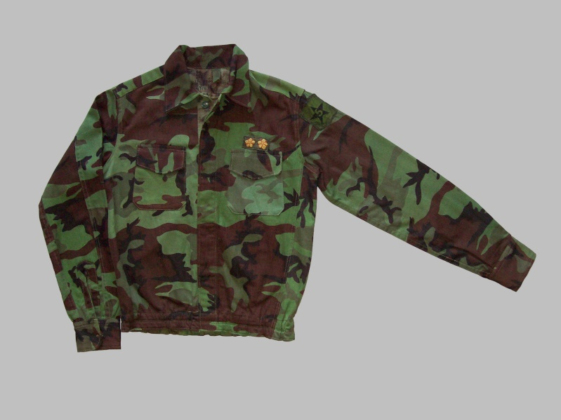 South Vietnam camouflage- North Vietnam/ Vietnam cut garment 100_8024