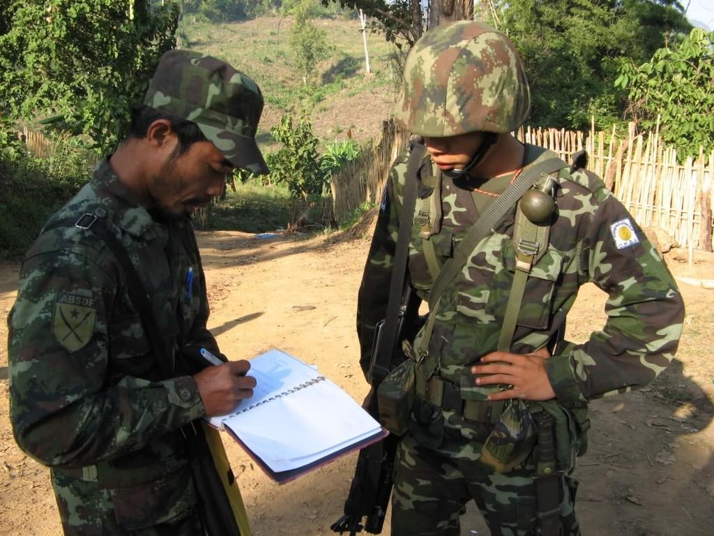 Burmese woodland 2m4vdb10