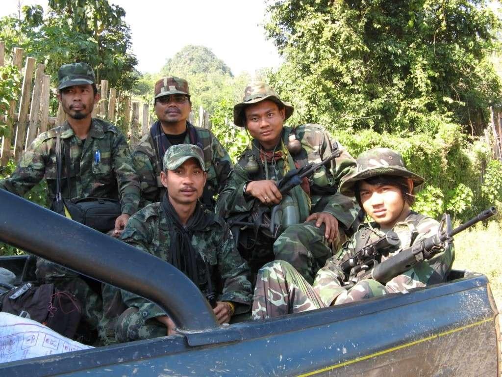 Burmese woodland 2wmlug10