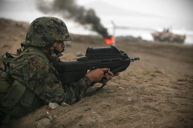 Peru marines pattern Parou-14