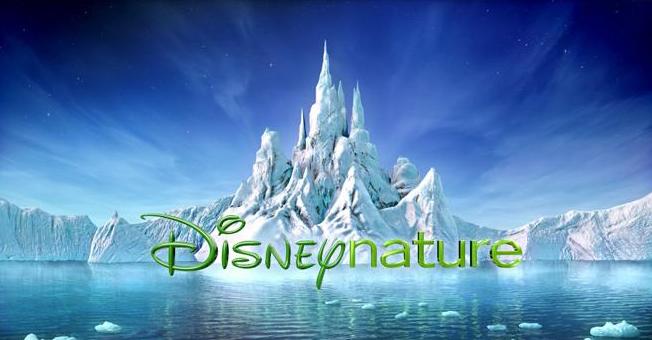 [Disney Nature] Les Ailes pourpres : le mystère des flamants Logo_d11