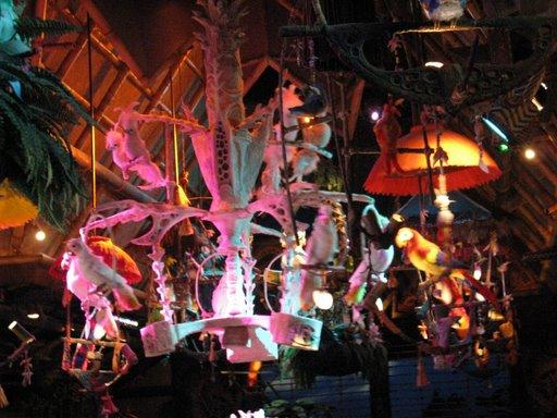 Les vacances de Mister Wolfi et Matttthieu : Walt Disney World Tour 2008 - Page 2 Img_1519